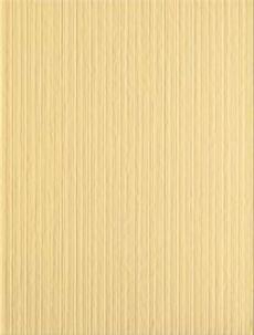 Samba Yellow WARKA071 25*33