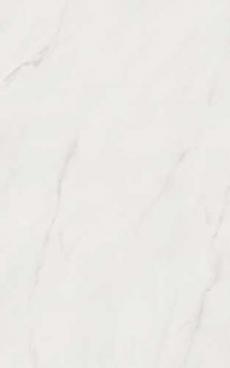 Grandi Marmi 0009462  Carrara 25*40