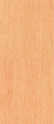 Breeze Orange 0013037 20*45
