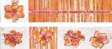 India WLAGE251 Listelli 5*25